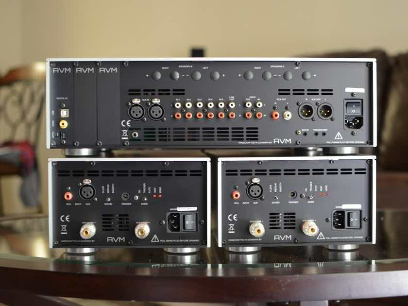 AVM Audio MA 3.2s Mono Amps AWARD WINNING - REMARKABLE!