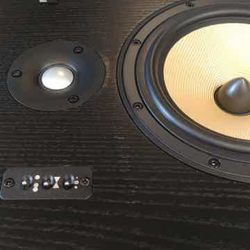 B&W (Bowers & Wilkins) DS-8s
