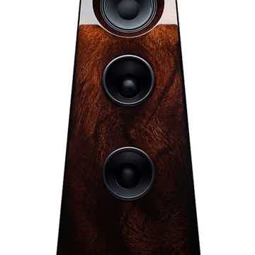 Optional Cocobolo for $700.00