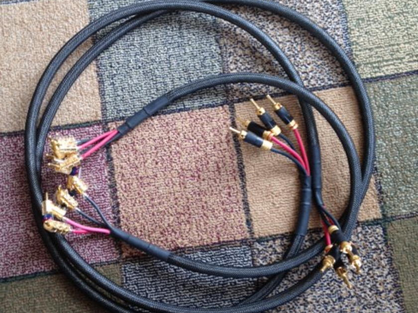 Synergistic Research E116262 4x12g speaker wire