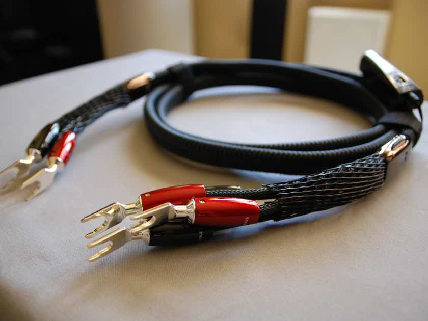 AudioQuest Meteor Speaker Cables.