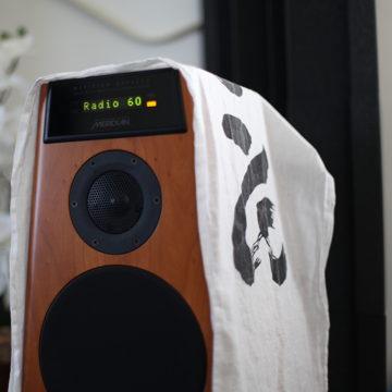 Meridian DSP-5200 Full Range Digital Speakers