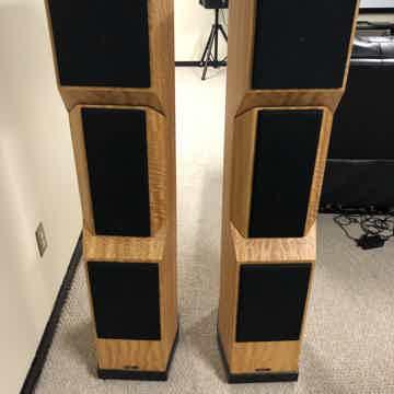 Tyler Acoustics  D2x
