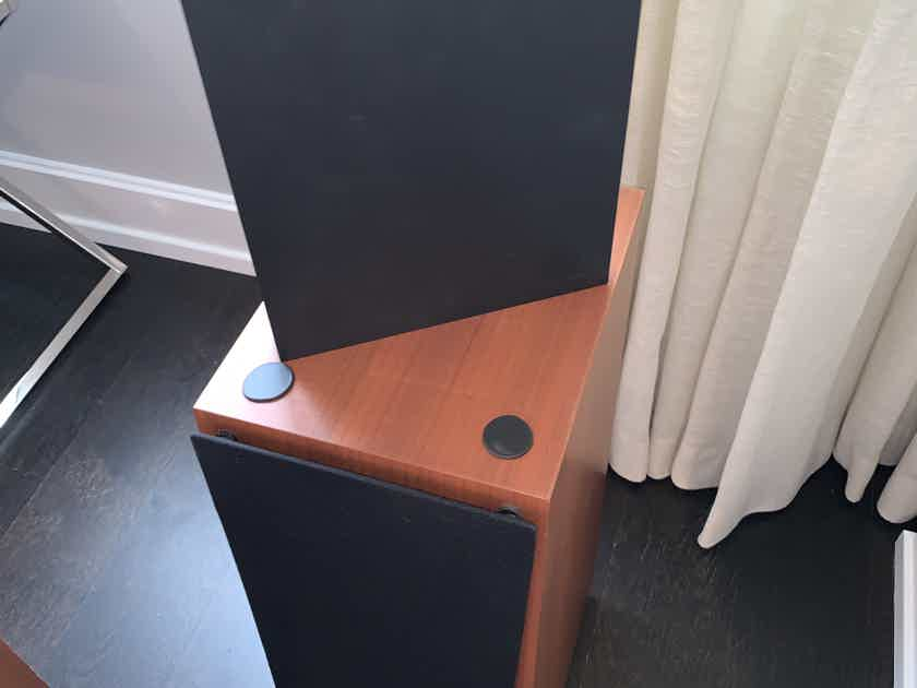 Verity Audio Rienzi Speakers