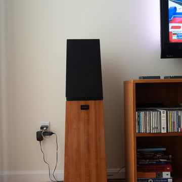 Verity Audio Parsifal Monitor and woofer