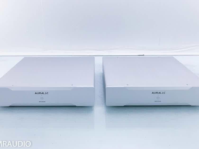 Auralic Merak Mono Power Amplifier Silver Pair w/ Warranty (3/3) (16127)