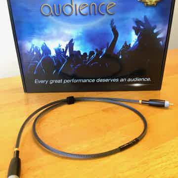 Audience Au24 SE Digital (RCA)