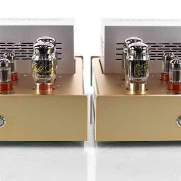 Reference Mono Tube Power Amplifier
