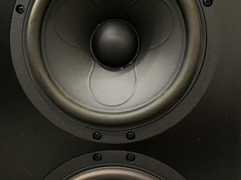 Selah Audio custom Scanspeak design Selah Audio custom Scanspeak design - Chicago