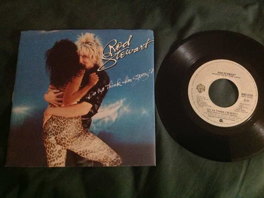 Rod Stewart - Do You Think I'm Sexy/Scarred And Scared Warner Brothers Records 45 Single NM With Picture  Sleeve