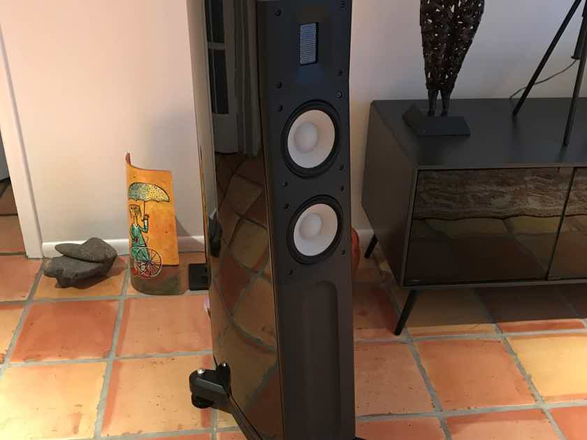 Raidho C2.1 Speakers  / Flawless in Miami