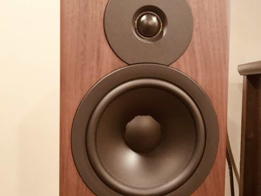 Dynaudio Evoke 20 Walnut Finish