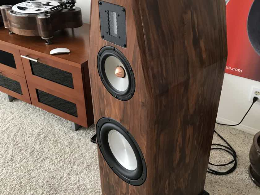 Salk Sound Veracity HT3 BEAUTIFUL and AWESOME