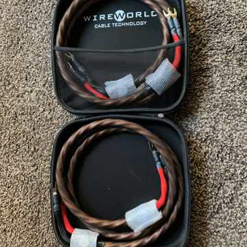 WireWorld Eclipse 7 Double 2M Speaker Cable