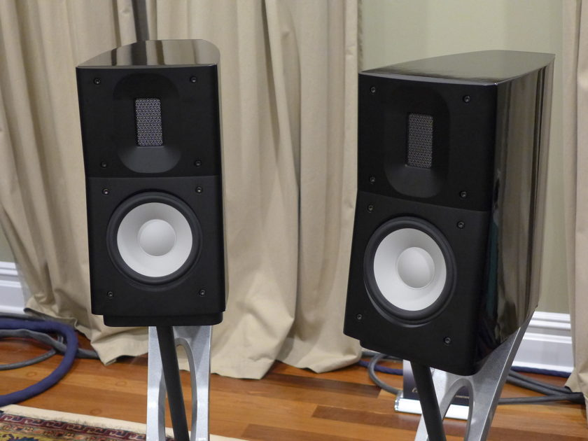 Raidho Acoustics  C1.1 with Dedicated Stand