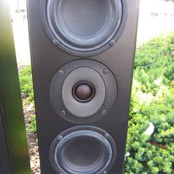 Totem Acoustic Ttr2b-3624