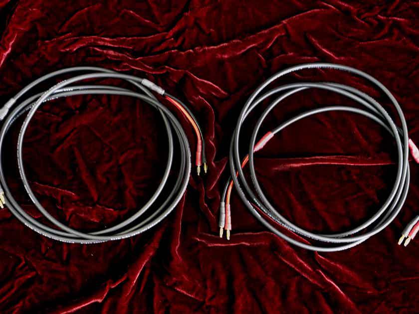 Mogami 10 AUDIO SPEAKER CABLES-STUDIO STANDARD 8 FEET