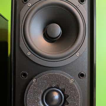 Audio Physic Classic 10