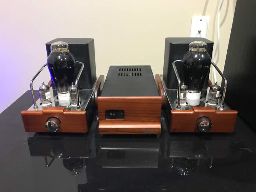 Dared Audio VP300B Amplifier