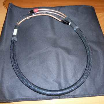 Proteus Provectus Din to RCA Phono Cable