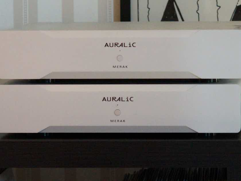 Auralic Merak Mono Amps in silver