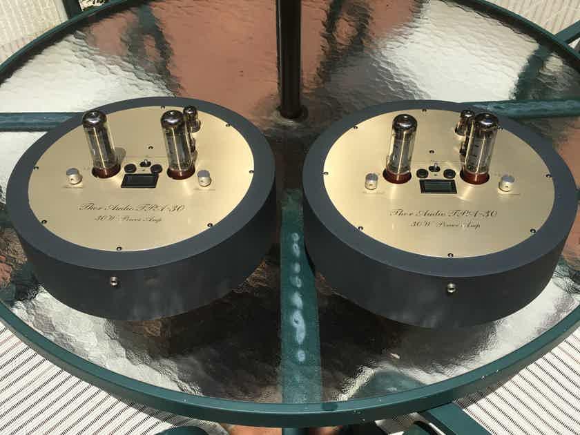 Thor Audio TPA-30 EL-34 Tube 30W Monoblock Amplifiers, Pics