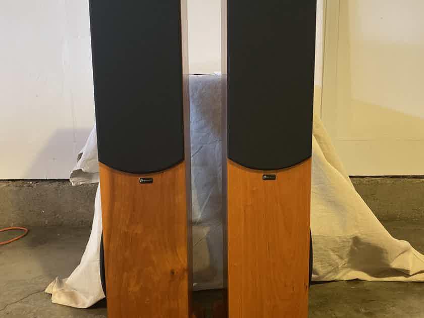 Aperion Audio Intimus 522D-PT Powered Floor Standing Speakers, Cherry