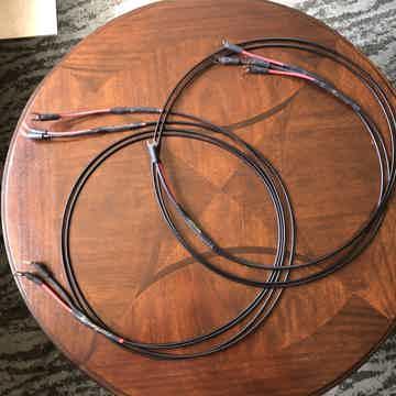 Au24 2m bi-wire w/spades