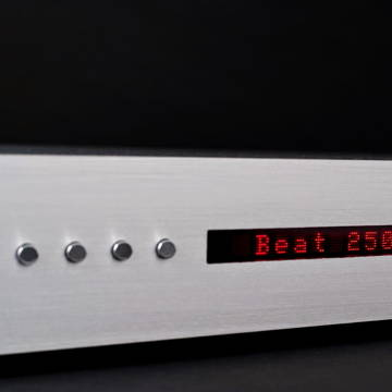 Densen Audio B-250 XS
