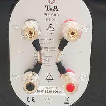 T+A Elekroakustik Pulsar ST 20