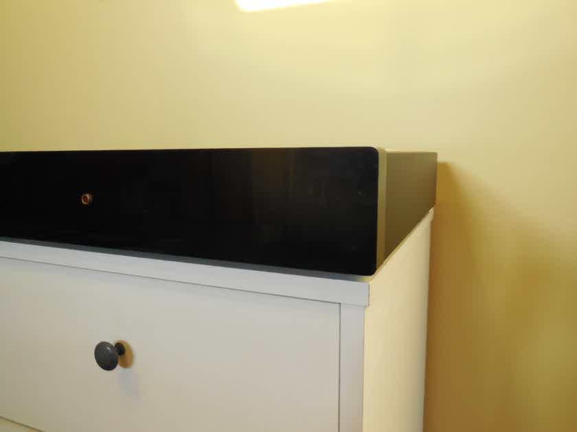Densen Audio DM-30  - True Dual Mono Design
