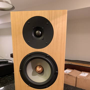 Tyler Acoustics Taylo Ref Monitor