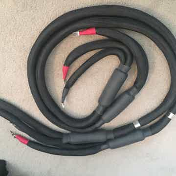Magic speaker cables 8ft