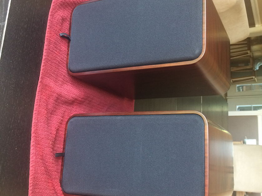 Peachtree Audio DS5.5 Rosewood Speakers, Immaculate Condition