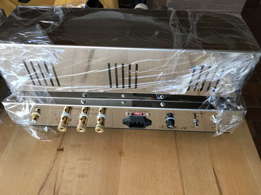 Coincident Speaker Technology Frankenstein MK III Mono amplifers
