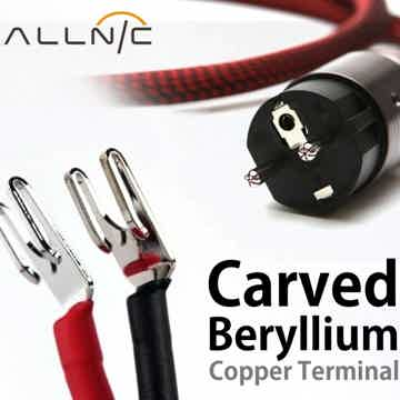 allnic ZL Technology ZL5000 Power Cable 20 Amp