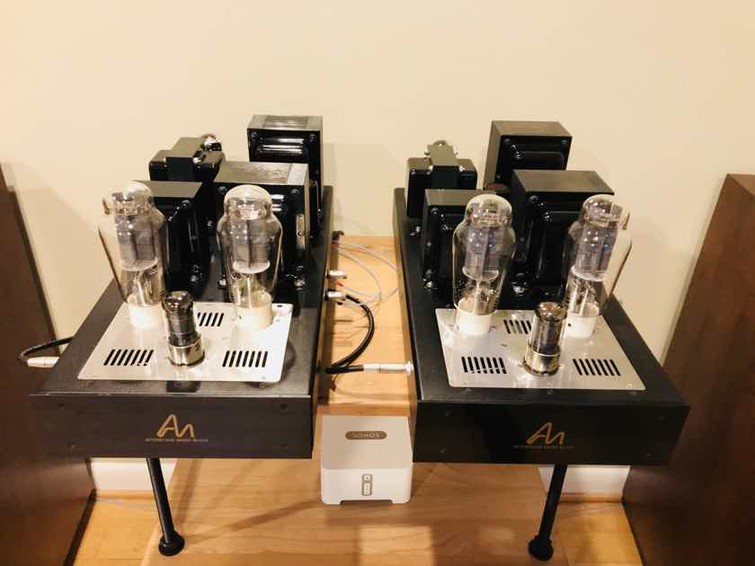 Audio Note Kits Parallel Interstage Monoblocks