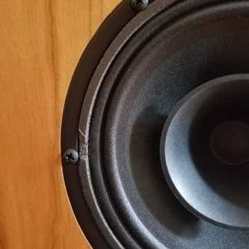 Omega Speaker Systems Super Alnico Monitor