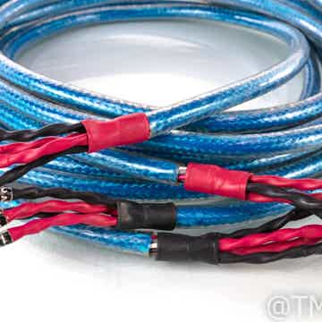 Rhapsody S Bi-Wire Speaker Cables