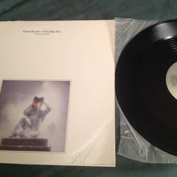 Kate Bush  The Big Sky Promo 12 Inch Single Special Sin...