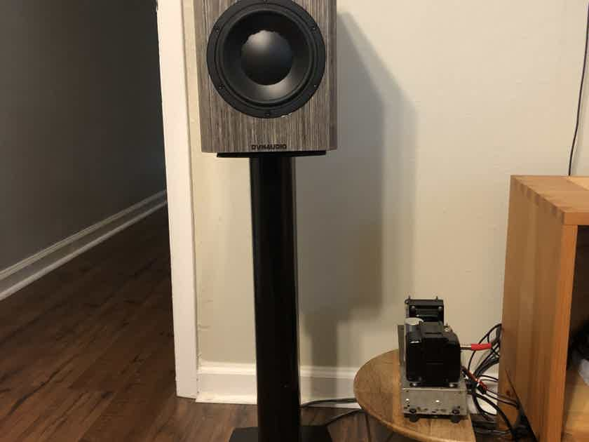 Dynaudio Special Anniversary 40 Grey Birch high Gloss
