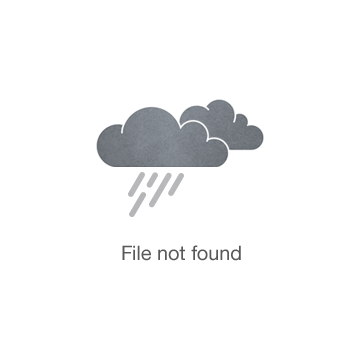 TRIANGLEART HATHOR TURNTABLE
