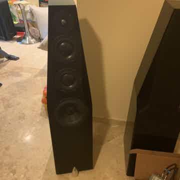 Totem Wind Speakers