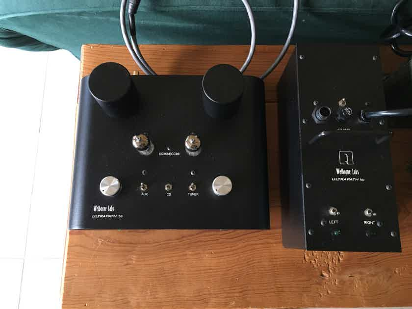 Welborne Labs bp battery powered preamp