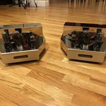 M300B Frankenstein  MK II Mono Amp
