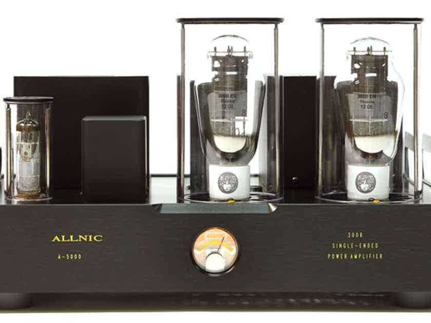 Allnic Audio A-5000 300B Monoblock Power Amplifier