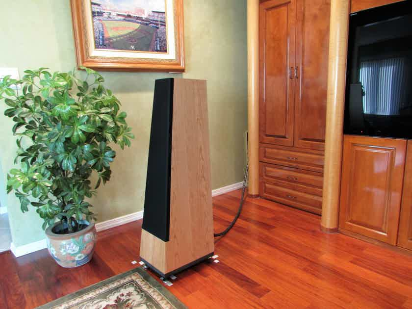 Vandersteen Treo CT Speakers