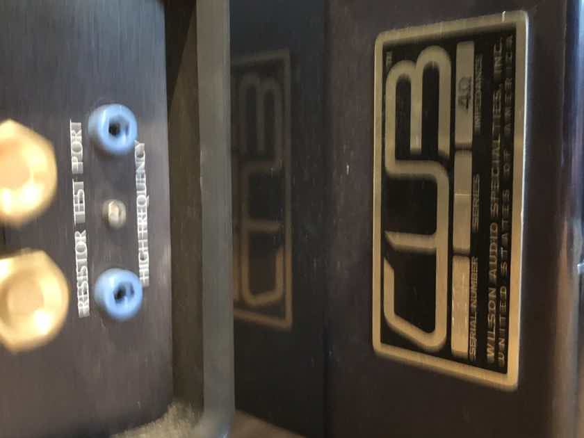 Wilson Audio Cub Center Channel Speaker, Rare