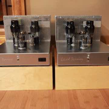 David Berning Co Custom Pair Mono Amps