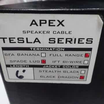 Tesla Apex